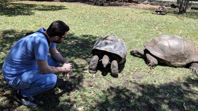 At Casela Land of Adventures, you get to interact with giant tortoises, some of whom are over 200 years old!