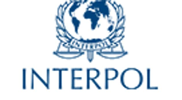Interpol has issued a Yellow Notice for the girl, Raina, on a CBI request.(Photo interpol.int)