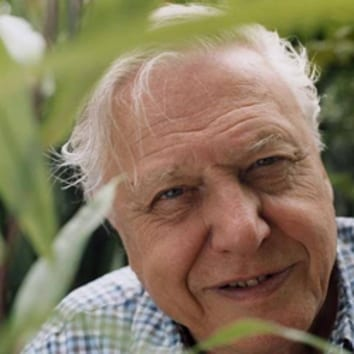 Sir David Attenborough will be conferred with the Indira Gandhi Prize for Peace, Disarmament and Development for 2019.(File Photo)