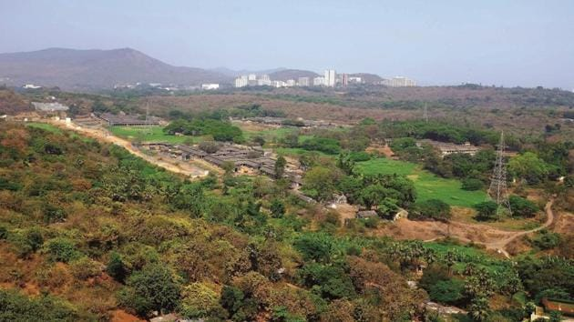 Aarey Milk Colony was established in 1949 as a government dairy farm on 1,287 hectares of land.(HT File)