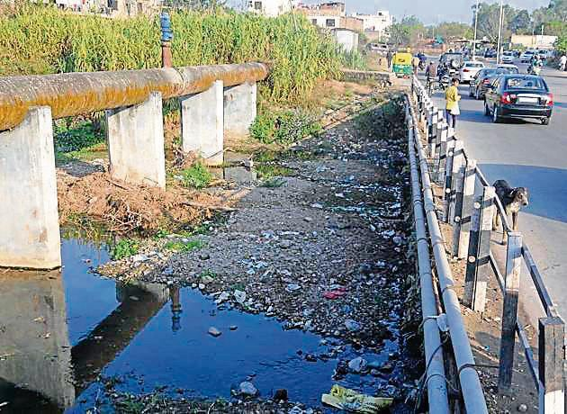 Sukhna Choe near Sector 26 Chandigarh(FIle photo)