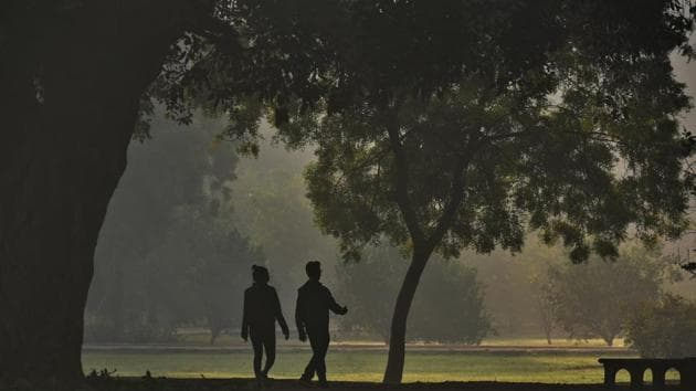 People walk inside a park on a cold winter morning near Humayun tomb in New Delhi.(Biplov Bhuyan/HT PHOTO)
