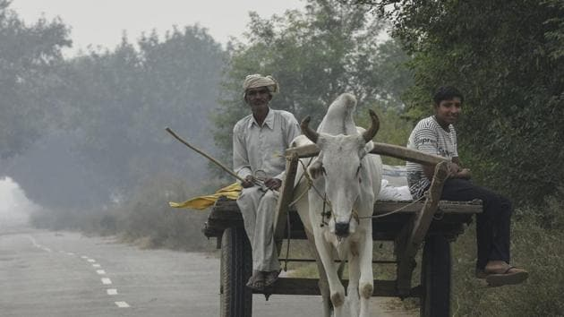 Haryana, India - Nov. 13, 2019: A man rides his cart at Barsola village, in Jind Haryana, India, on Wednesday, November 13, 2019. The Khera khap of Jind district in Haryana has decided not to use their caste as their surnames. (Photo by Burhaan Kinu/ Hindustan Times)(Burhaan Kinu/HT PHOTO)
