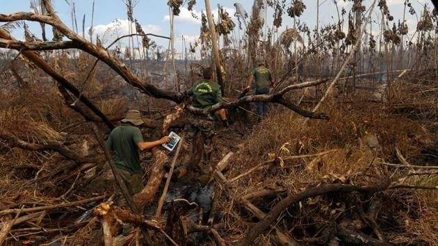 Bolsonaro and Environment Minister Ricardo Salles have said previous governments played a role in deforestation's increase(Reuters File Photo)