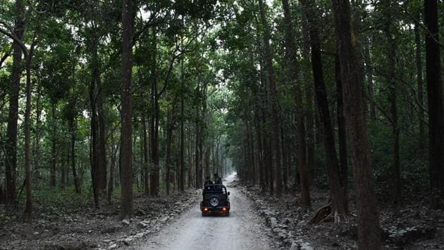 """Organised by travel company The Experience Co, the second edition of """"F of X"""" that opens on February 20 at the Jim Corbett National Park.(Unsplash)"""