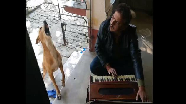 The dog joined his human to sing 'Teri Meri Kahani' by Ranu Mondal.(Facebook/Subir Khan)
