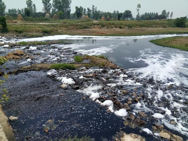 Yamuna river criss-crosses Yamunanagar, Karnal, Panipat, Sonepat, Faridabad and Palwal districts, which have a number of polluting industries, state before entering Delhi.(HT FILS)