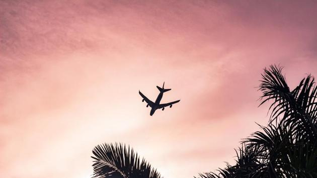 Flight of fancy? Aviation industry tries to go green