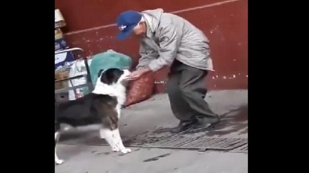 The video shows an elderly man feeding water to a thirsty dog.(Twitter/@susantananda3)