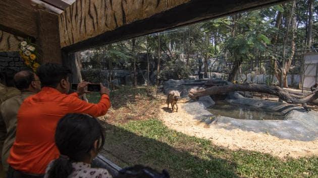 Visitors at the Byculla Zoo in Mumbai.(HT Photo)