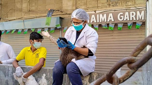 An official of animal rescue team checks a cat rescued from a cage of a closed animal market during a government-imposed nationwide lockdown in the wake of Covid-19 outbreak, in Karachi.(AFP Photo)