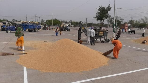 Precautions in place, Punjab begins exercise to procure 130 lakh tonnes  wheat | Hindustan Times