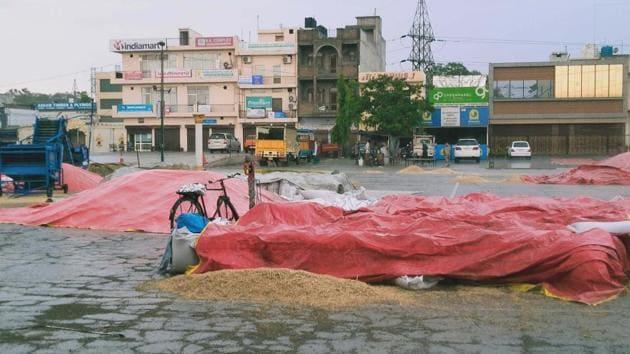 Rain adds to Punjab farmers' woes amid Covid-19 crisis   Hindustan Times