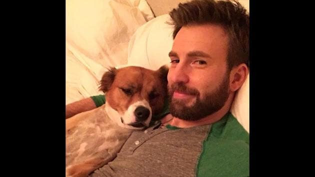 """""""It went so wrong, so fast. I guess some things are better left to the professionals,"""" Chris Evans tweeted.(Twitter/@ChrisEvans)"""