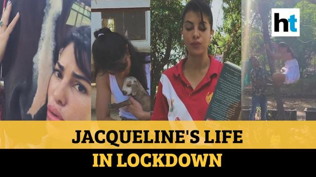 Actor Jacqueline Fernandez shared a video of her life at Salman Khan's farmhouse in Panvel. Jacqueline is spending her lockdown days riding horses, reading, snacking and climbing trees. The almost four-minute video shows Jacqueline climbing up coconut trees, washing, feeding and riding horses. Jacqueline's 'little film' features a few other animals and birds like hen, a baby goat and a few stray dogs. Jacqueline is seen doing her own laundry, snacking on berries while laying in the grass. Jacqueline is also seen reading books and making friends with the staff. Earlier, the 34-year-old actor turned cover girl for Harper's Bazaar India magazine. The pictures featured in Harper's Bazaar were clicked in Salman's farmhouse.