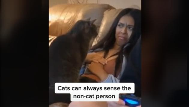 Kudos to the woman for letting the feline do as it pleases despite her uneasiness.(TikTok/@johngonzalez)