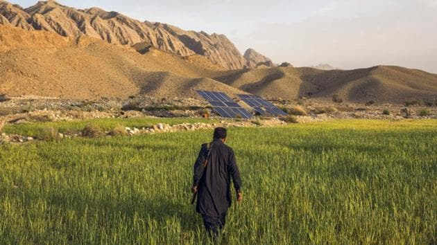 An armed farmer walks through one of his fields in Pashta Khan Mollah village, Pakistan, on Thursday, March 5, 2020. Swarms of locusts this year have all but wiped out wheat crops on farms in the mountains of Pakistan's vast and arid Balochistan province.(Bloomberg)
