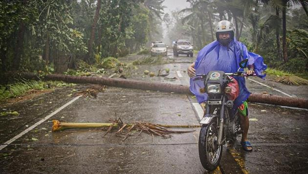 A motorist rides on a highway littered with fallen coconut trees in Can-avid town, Eastern Samar province. The lockdown in Luzon is to be eased this weekend, except in metropolitan Manila and two other high-risk areas. The rest of the country will be placed in less restrictive quarantine. The Philippines has reported more than 11,600 coronavirus infections, including 772 deaths, among the highest in Southeast Asia, reported AP. (Alren Beronio / AFP)
