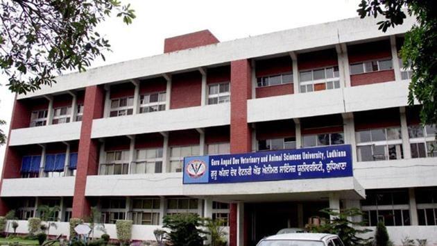 Guru Angad Dev Veterinary and Animal Sciences University (GADVASU) in Ludhiana.(HT Photo)