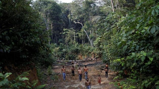 A deforested area inside the Amazon rainforest near Humaita, Amazonas State, Brazil.(Reuters File)
