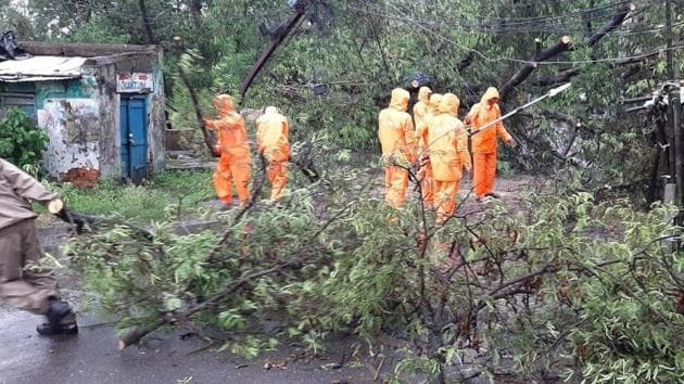 Odisha Disaster Rapid Action Force workers clearing roads in Balasore district after Cyclone Amphan uprooted trees as it made landfall on Wednesday afternoon.(HT PHOTO.)