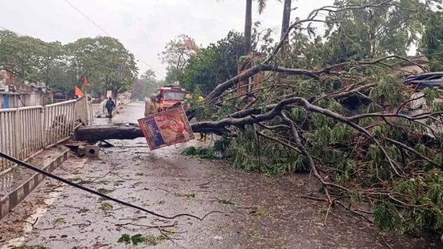 Fire Services team clearing road blockage after a tree uprooted due to heavy winds and rain ahead of cyclone Amphan near R&B office in Bhadrak on Wednesday.(ANI)