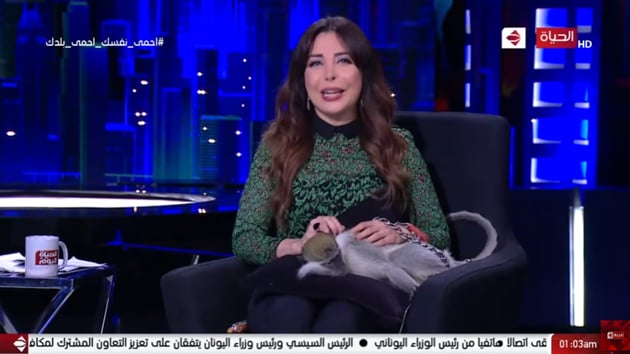 The image shows the TV show host with the monkey.(YouTube/AlHayah TV Network)