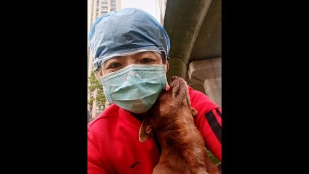 The image shows Chinese nurse Zhang Dan with Doudou, a street dog.(AP)