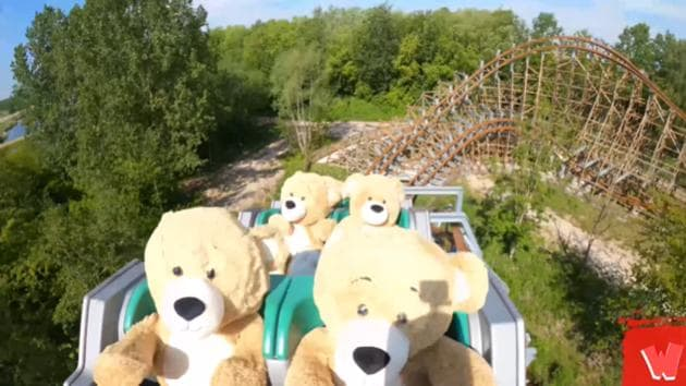 The bears were riding on a roller coaster called UNTAMED.(YouTube/Walibi Holland)