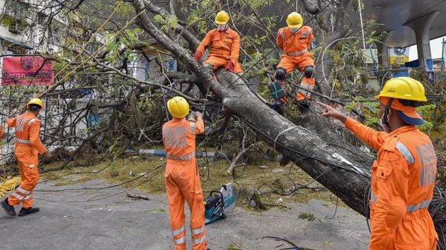 NDRF personnel work to clear an uprooted tree from a road, in the aftermath of Cyclone Amphan, in Kolkata on May 26, 2020.(PTI file photo)