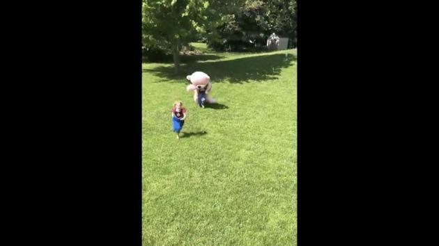 The image shows a huge 'teddy bear' chasing the girl.(Twitter/@BuitengebiedenB)