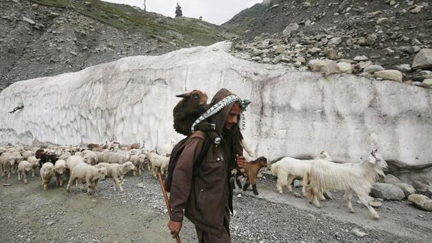 A nomadic shepherd belonging to the Bakarwal community crosses a mountain pass on his way down with his flock of sheep and goats, near Peer-Ki-Gali, high up in the Pir Panjal mountain range in Jammu and Kashmir on June 2.The Bakarwal community comprises around 0.4% of the former state's population according to the 2011 census. (Waseem Andrabi / HT Photo)
