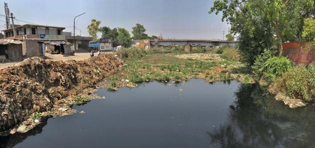 Locals worry that blockage in Buddha Nallah will lead to waterlogging in various parts of Ludhiana.(Gurpreet Singh/HT)