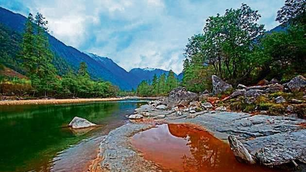 The 3,097-megawatt project being developed in Arunachal Pradesh's Dibang valley entails the loss of 270,000 trees at the junction of the Paleo-arctic, Indo-Chinese, and Indo-Malayan biogeographic regions with luxuriant forests.(Special Arrangement)
