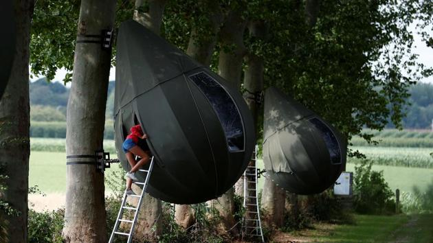 A guest climbs on a ladder to enter a tear drop-shaped tent hanging from a tree created by Dutch artist Dre Wapenaar, offering an unusual accommodation for tourists in the Belgian countryside, near Borgloon, Belgium.(REUTERS/Francois Lenoir)