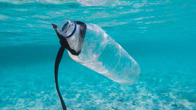 Ocean plastic pollution:Surface clean-up technology will not solve plastic problem,...