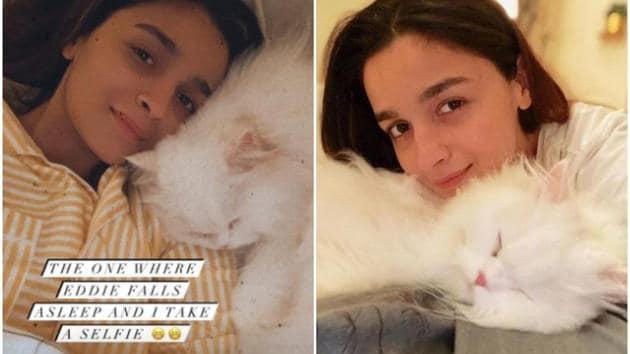 Alia Bhatt has many pet cats, Edward being one of them.