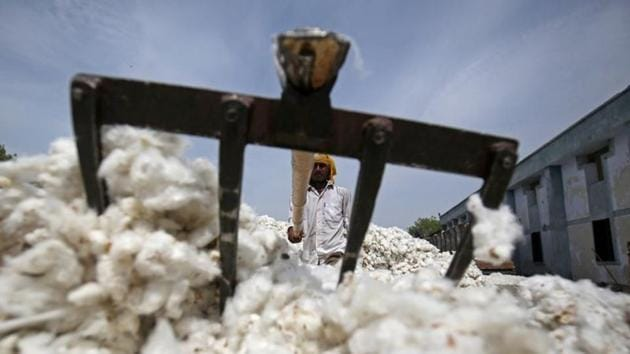 An employee works at a cotton processing unit in Kadi town, in the western Indian state of Gujarat.(REUTERS)