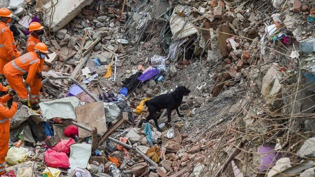NDRF personnel sift through the rubble with the help of a sniffer dog in search of survivors at the collapse site in Mahad in Raigad.(PTI)