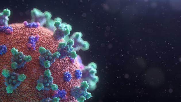 Coronavirus(Unsplash)