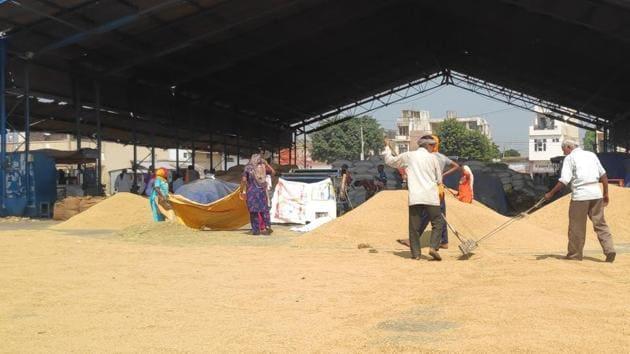 Farmers selling their produce at a grain market in Kurukshetra.(HT Photo)