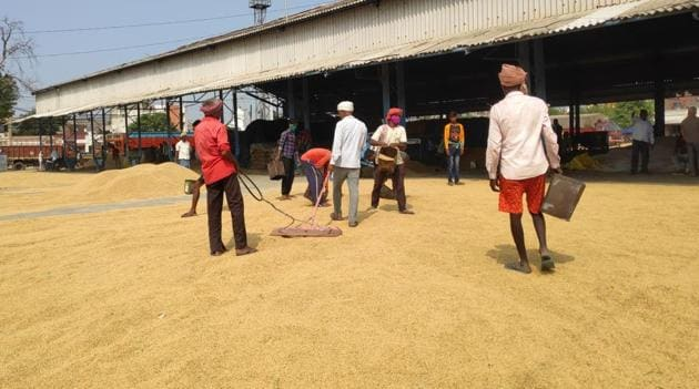 Labourers at a grain market in Kurukshetra. Procurement operations in Haryana's mandis resumed on Tuesday.(Sourced)