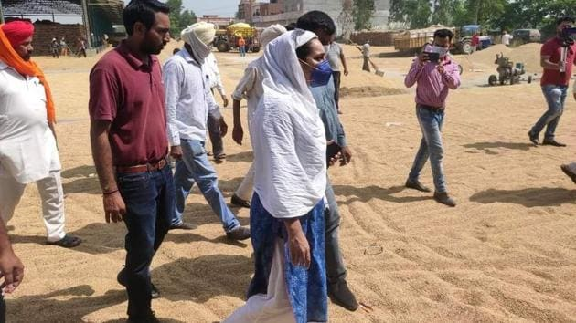 To check the procurement process, Haryana Democratic Front (HDF) leader Chitra Sarwara visited the Ghasitpur mandi in Ambala district and found that the whole mandi was full of paddy with no space left.(HT PHOTO)
