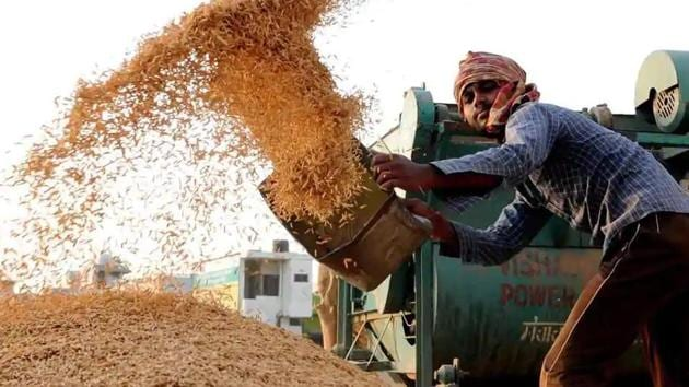 There is a shortage of jute sacks in the market because of Covid-19, which is the reason behind the delay in procurement, said Chhattisgarh agriculture minister. (HT Photo)