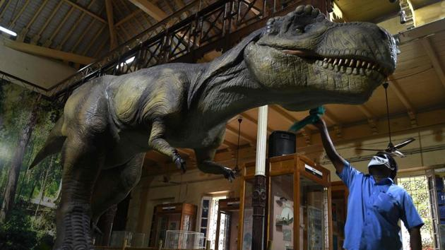 A worker cleans a model of a dinosaur displayed at the Government Museum in Chennai after it was reopened on November 10. Museums, art galleries and exhibitions across the country welcomed visitors back in on November 10, with revised guidelines for their operation by the Ministry of Culture coming into effect. (Arun Sankar / AFP)