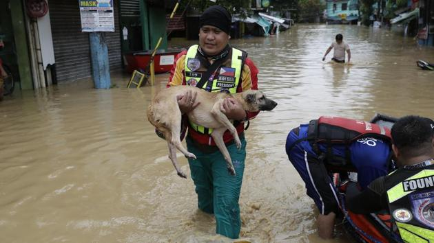 A rescuer carries a dog as floods continue to rise in Marikina, Philippines due to Typhoon Vamco on November 12.The typhoons have battered the Philippines as it faces an uphill struggle to breathe life into its withering economy while keeping coronavirus infections under control, Reuters reported. (Aaron Favila / AP)