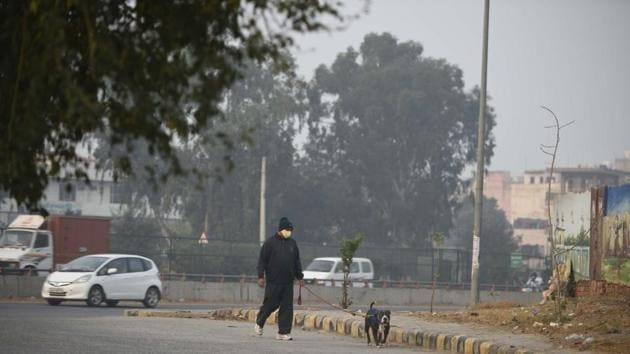 A man out walking his dog at Sector-11, Gurugram, on November 17.(Parveen Kumar/HT photo)