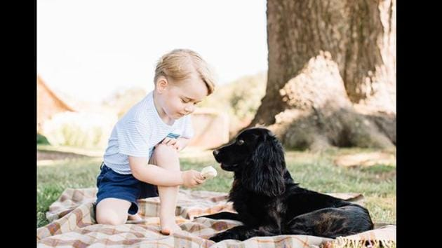 The image shows Prince George playing with Lupo.(Instagram/@kensingtonroyal)