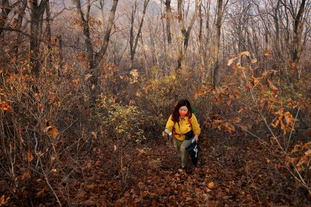 Kim Kang-Eun, an artist who leads Clean Hikers, collects litter while hiking a mountain in Incheon, South Korea, November 16, 2020. (REUTERS)