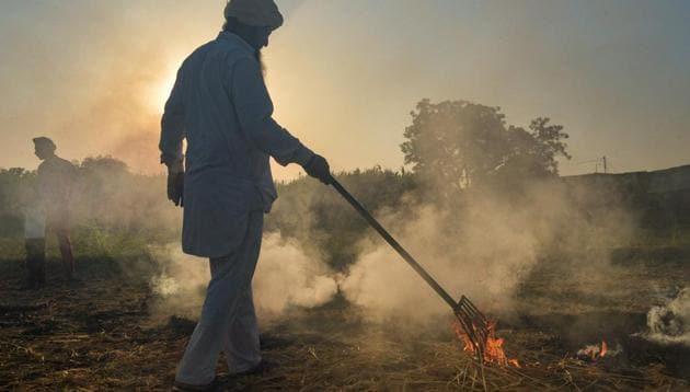 A farmer burns paddy stubble, in Rupnagar distric.(PTI)